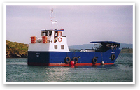Murphy's Ferry - Bere Island